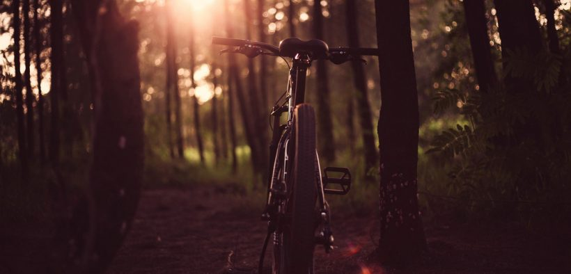 Im Herbst und Winter ist das Licht am E-Bike ein wichtiger Begleiter