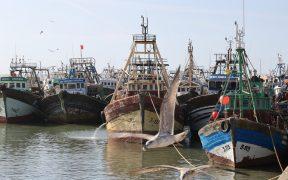Gemeinsames Fischereigesetz der EU