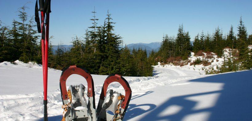 Schneeschuhwandern - Schneeschuhe im Schnee