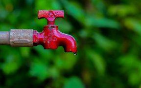 Tricks zum Wassersparen auf Future-Green