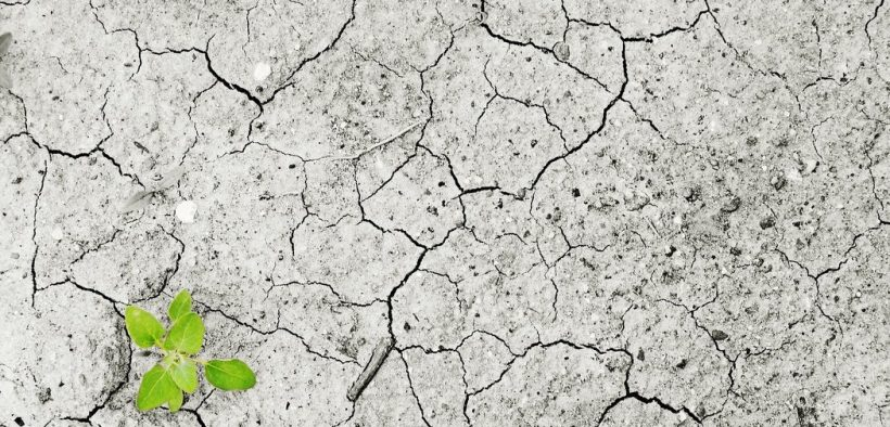 Klimaziele verfehlt - Lange Phasen der Trockenheit drohen