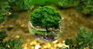 Umweltmanagement und -schutz durch EMAS