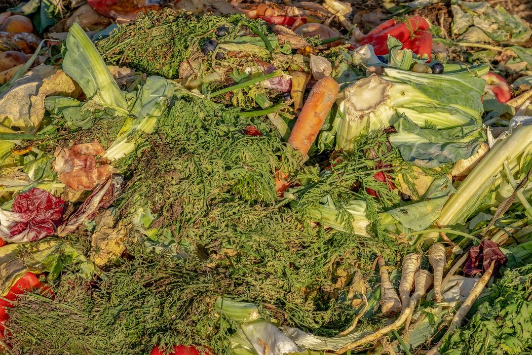 Lebensmittel spenden - verschwendetes Gemüse im Müll