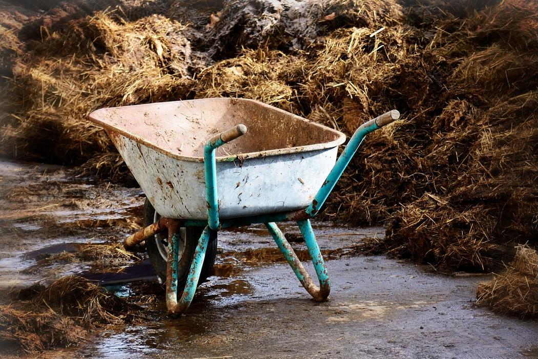 Pferde- und Rinderdung als organischer Dünger