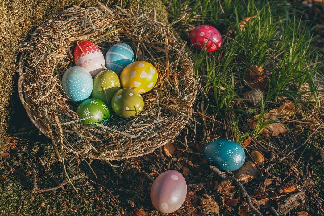 Ostereier natürlich färben - Das perfekte Nest