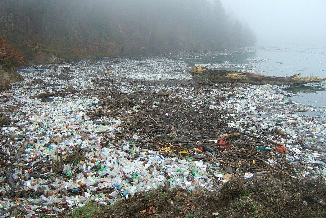 Plastikinseln - Zerstörung der Natur