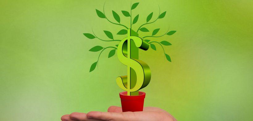 Ökologische Marktwirtschaft