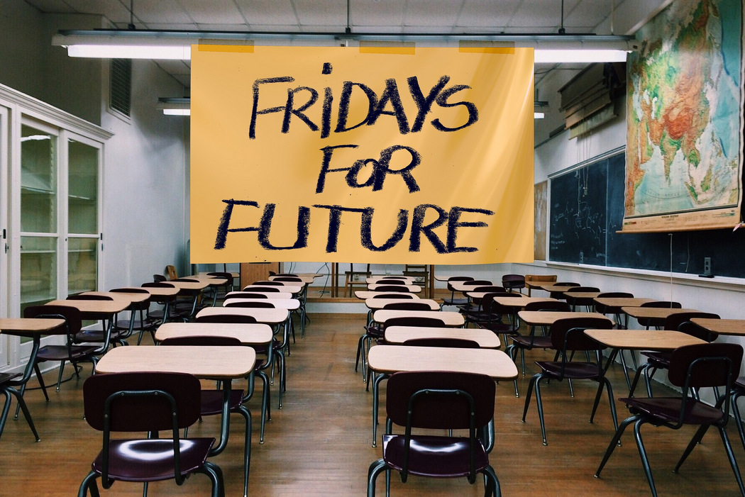 Ökologische Marktwirtschaft - Fridays for Future