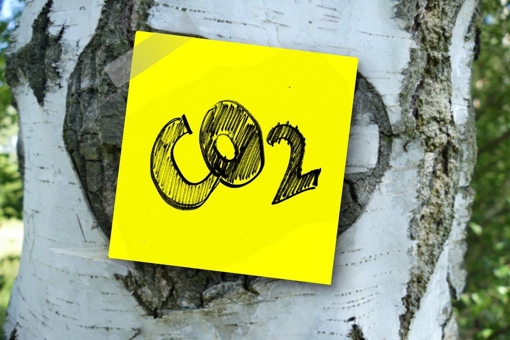 Ökologische Marktwirtschaft - CO2-Bepreisung